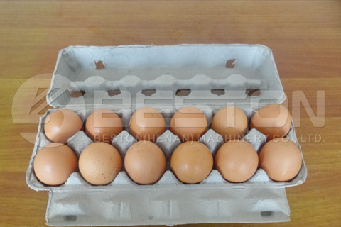 12-hole Egg Carton