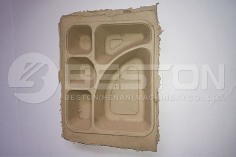 Electronic Tray Made by Paper Pulp Molding Plant