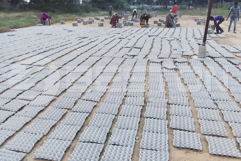 Natural Drying Method for Small Scale Production