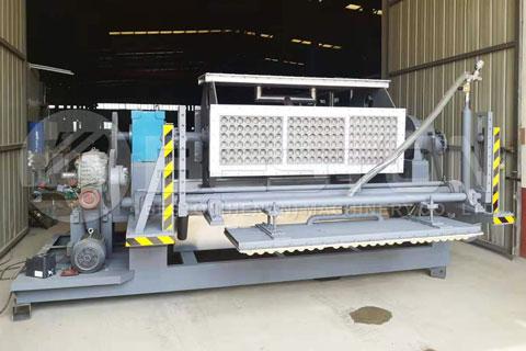 Paper Pulp Molding Machine for Sale