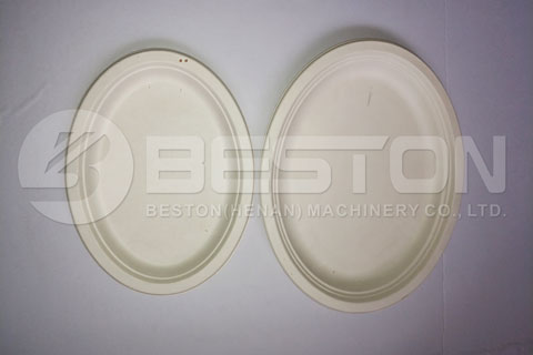 Plate Tray Made by Paper Pulp Moulding Plant